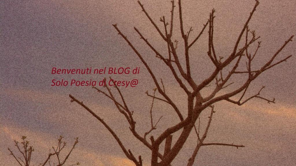 Cresy's Blog