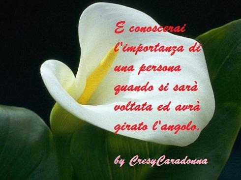 Pensieri e Riflessioniby CresyCaradonna