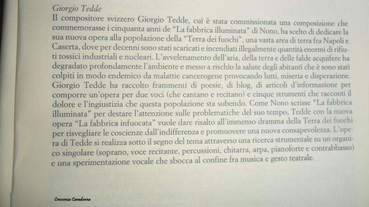 La terra infuocata Di Giorgio Tedde ( La terra dei fuochi )